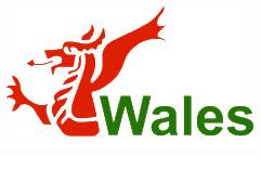 Cyber-Wales